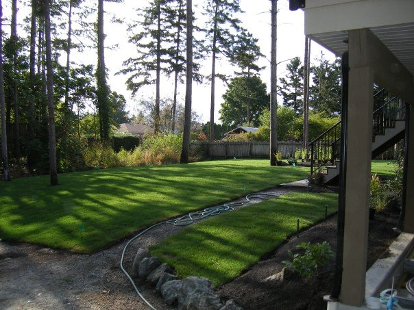 Care and Landscaping Services | Saanich Peninsula | Saanich | Sidney