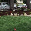 Affordable Landscaping Projects To Consider For 2016-2017